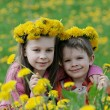 Brother and sister with dandelion garlands — Stock Photo
