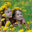 Stock Photo: Brother and sister with dandelion garlands