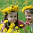 Brother and sister with dandelion garlands - Stock Photo