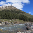 Mountain river — Stock Photo #3389056