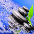 Zen stones — Stock Photo #2777862