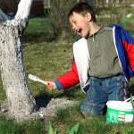 Boy painting apple tree — Stock Photo #2714504