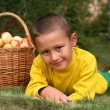 Little boy with apples — Stock Photo #2731259
