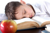 Boy sleeping on book at apple — Stockfoto