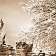 Monuments of buddah, ruins of Ayutthaya — Stock Photo