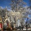 buddhist temple in ayutthaya — Stock Photo