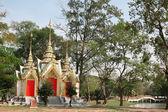 Świątynia buddyjska w ayutthaya — Zdjęcie stockowe