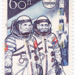Постер, плакат: Astronauts Gubarev and Remek