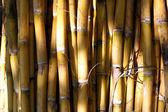 Bambus-wand — Stockfoto