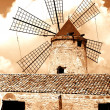 Sicily, windmill near Trapani-city — Stock Photo