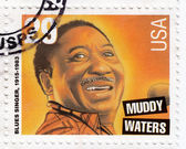 Blues singer Muddy Waters — Стоковое фото