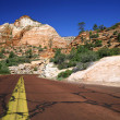 Road in Zion NP, Utah - Stock Photo