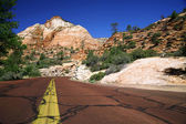 Road in Zion NP, Utah — Stock Photo