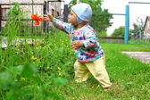 Baby taken red flower — Stock Photo