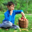 Harvest time - little boy posing outdoors with apples — Stock Photo