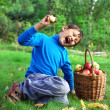 Big harvest - little boy posing outdoors with apples — Stock Photo