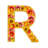 Flowers letter R — Stock Photo
