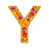 Flowers letter Y — Stock Photo