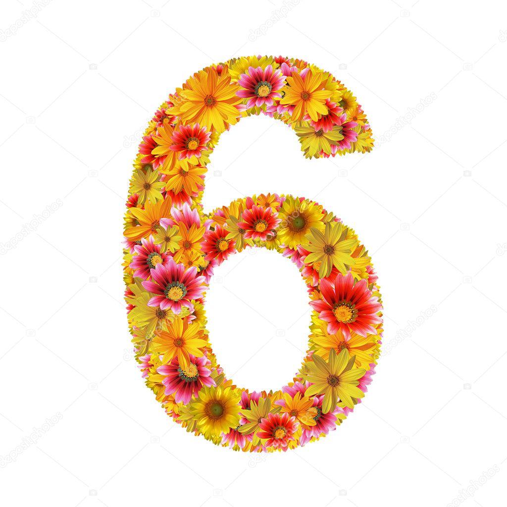 Flowers number six — Stock Photo © julydfg #2914951