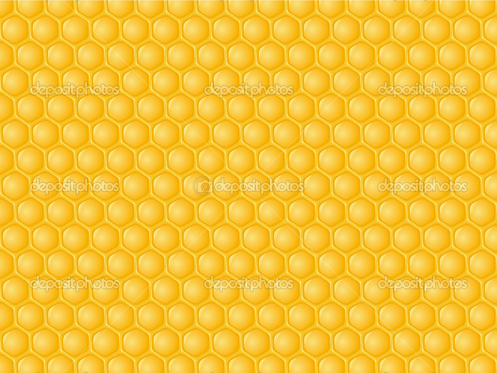 Honeycomb with honey background. Vector illustration. — Stock Vector #3787086
