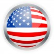 North American USA flag button - Stock Vector
