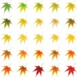 Vector autumn leaves - Stock Vector