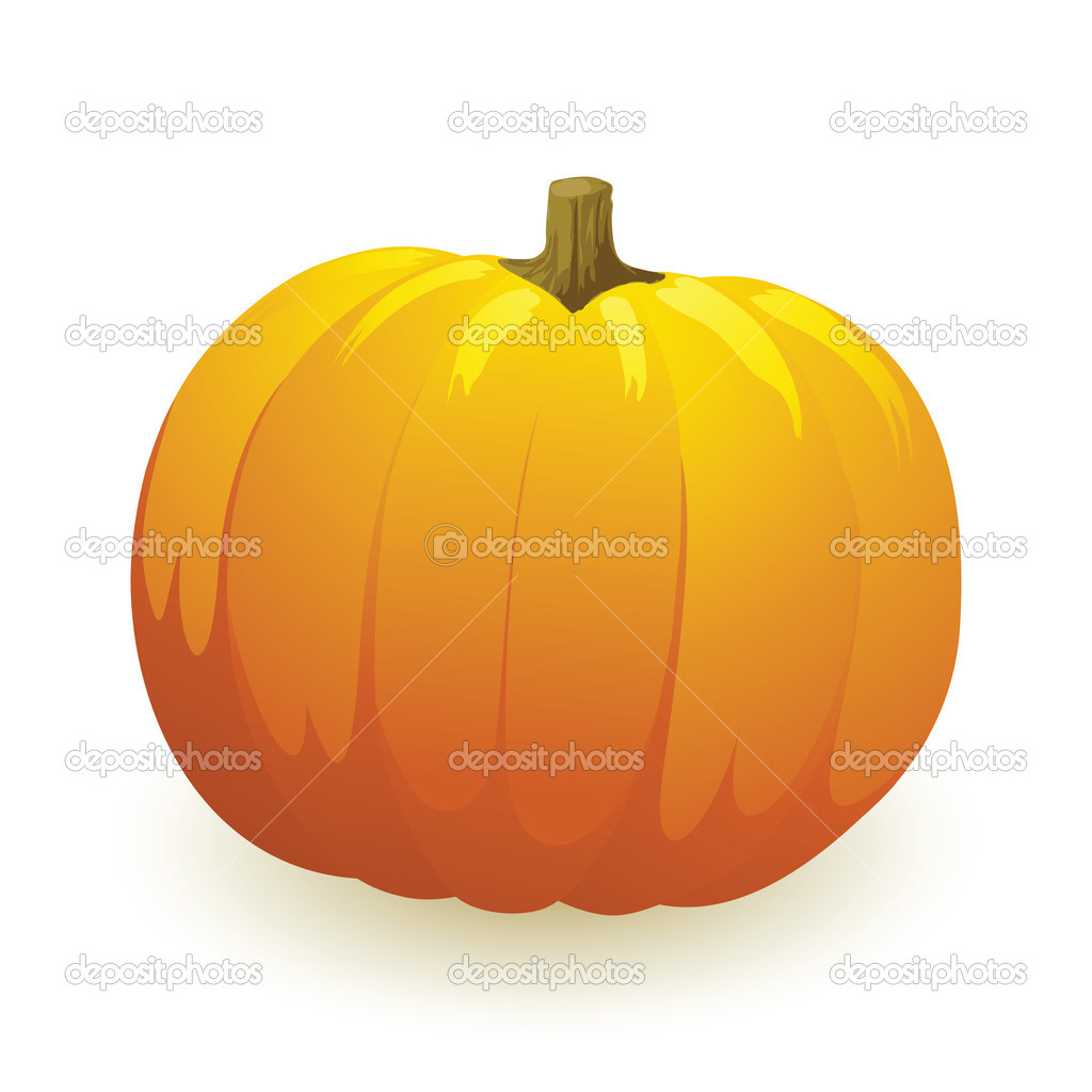 Vector pumpkin vegetable fruit isolated on white background — Stock Vector #3777631