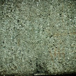 Green concrete wall texture — Stock Photo #2820289