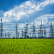 Stock Photo: Summer meadow with high-voltage towers