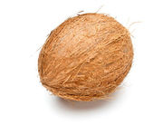Single coconut — Stock Photo