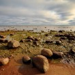 Rocky seashore - Stock Photo