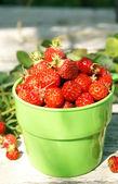 Zralé jahody šťavnaté zelené Cup — Stock fotografie