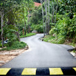 Stock Photo: Road in green malaysirainforest.