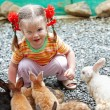 Stock Photo: Happy girl feed group rabbit.