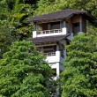 Health resort in green rainforest. - ストック写真