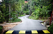 Road in green malaysia rainforest. — Stock Photo