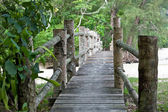 Wooden bridge in malaysia jungle. — Stock Photo