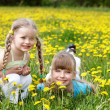 Children in field with flower. — Stock Photo