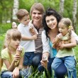 Outdoor family with kids on green grass. — Stok fotoğraf