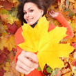 Royalty-Free Stock Photo: Girl in orange on autumn foliage with yellow leaf.