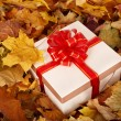 Autumn still life with  gift box. — Stock Photo