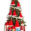 Christmas tree with santa hat and group gift box. — Stock fotografie