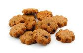 Cocoa chocolate cookies — Stock Photo