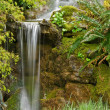 Small garden waterfall — Stock Photo