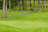 Golf bayrak — Stok fotoğraf