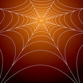 Spooky spiders web — Stock Vector