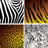 Animal skin variation — Stock Vector