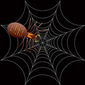 Araña spooky halloween — Vector de stock
