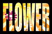 Flower text — Stock Vector