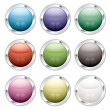 Button candid silver — Stock Vector